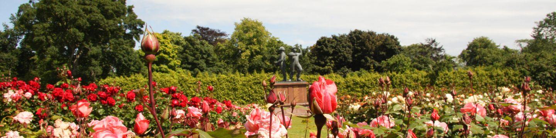 Rose garden with Piper Alpha memorial
